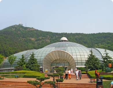 Dalian City Tour